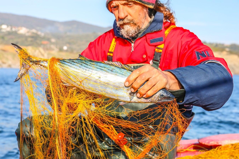 Pécheur récupérant un poisson coincé dans ses filets